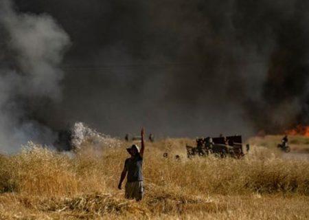 تروریستها مزارع کشاورزی را در شمال سوریه به آتش کشیدند