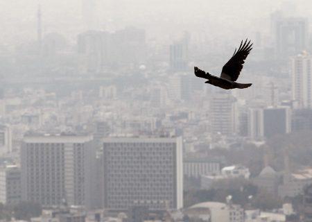 آلودگی هوا روند انتشار کرونا را سرعت میبخشد