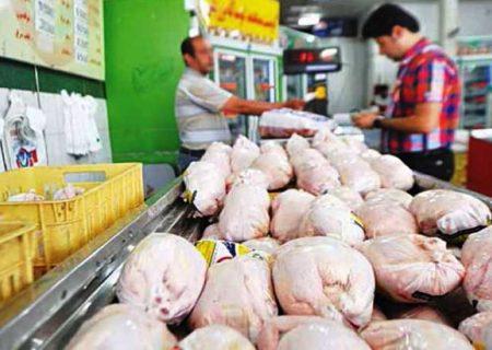 ماجرای مرغهای عربی در مشهد چیست؟