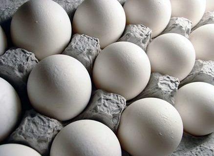 شانه تخم مرغ را بیشتر از ۲۰ هزار تومان نخرید!