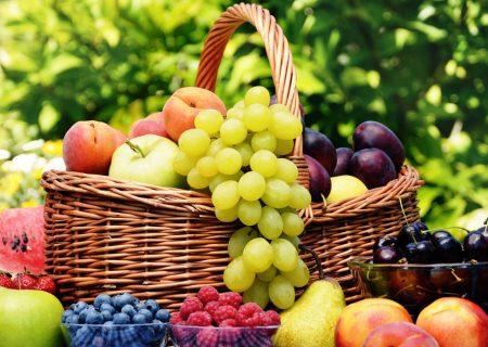 میوه هایی برای هیدراته نگه داشتن بدن