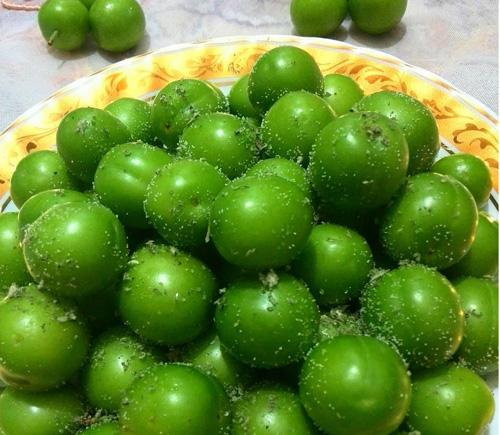 گوجه سبز را اینجوری بخورید تا سنگ کلیه نگیرید!