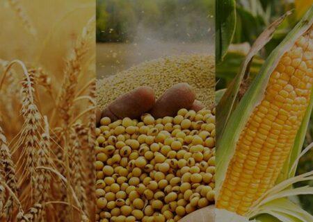هجوم کشورها به بازار جهانی برای احتکار مواد غذایی!