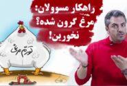 فیلم/ راهکار مسوولان: مرغ گرون شده؟ نخورین!