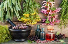 بایدها و نبایدهای طب سنتی در فصل زمستان