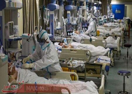 ویروس هندی خطرناک است یا بیخطر/ واکنش به تناقض گوییها