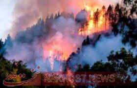 هزاران هکتار از اراضی اسپانیا در آتش سوخت
