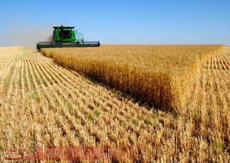 معاونت علمی ریاست جمهوری مکلف به حمایت از بخش کشاورزی شد